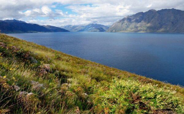 Otago New Zealand - Gold panning destination